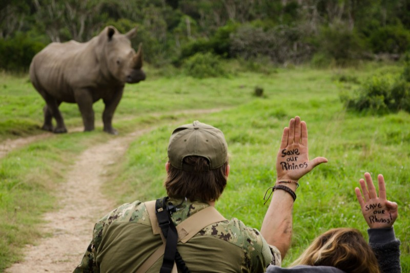 Save Our Rhino 2